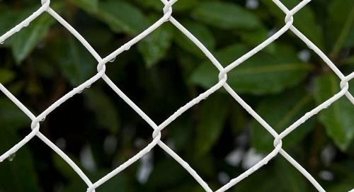 ứng dụng lưới thép b40 bọc nhựa